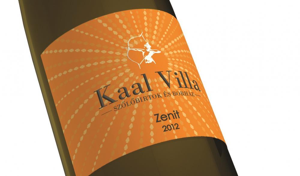 kaal_villa_zenit_2012_kozel