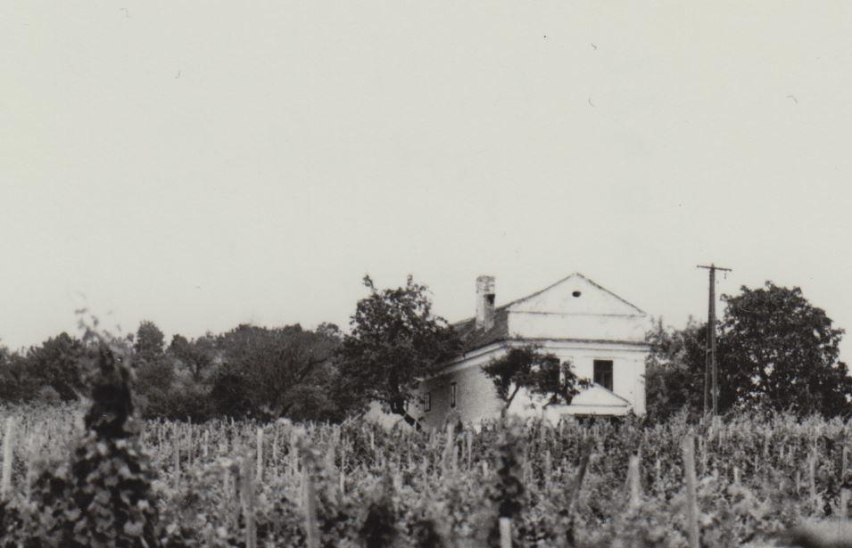 Birkás kúria
