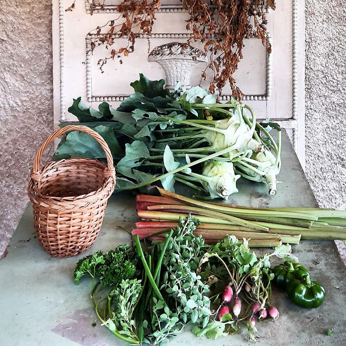 Ez a sok jó mind a kertből, középen a rebarbara szárak.